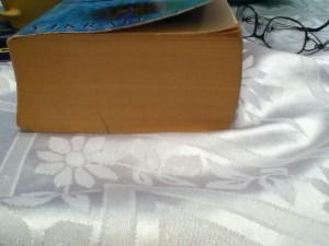 Longest Novel Ever?