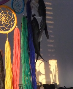 Reflections of 2 Dream Catchers
