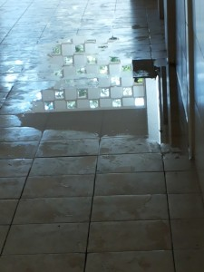 Flooding from one of the toilets - not nice but caused delightful reflections in the hallway