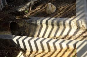 Throwing Apples & Zebras down the drain (Naomi's photos)